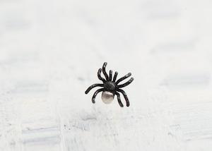 【New】ちいさな蜘蛛のシングルピアス / おしりシロ
