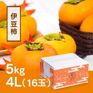 【予約 10月中旬頃より順次発送】伊豆柿 4L 16玉(5kg)
