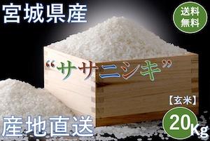 宮城県産【ササニシキ】玄米 20Kg/袋【送料無料】