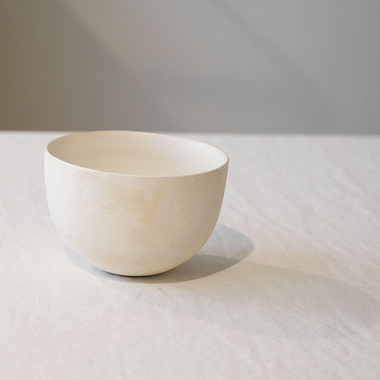 田中直純  Naozumi Tanaka  磁化粧 bowl  M no.5