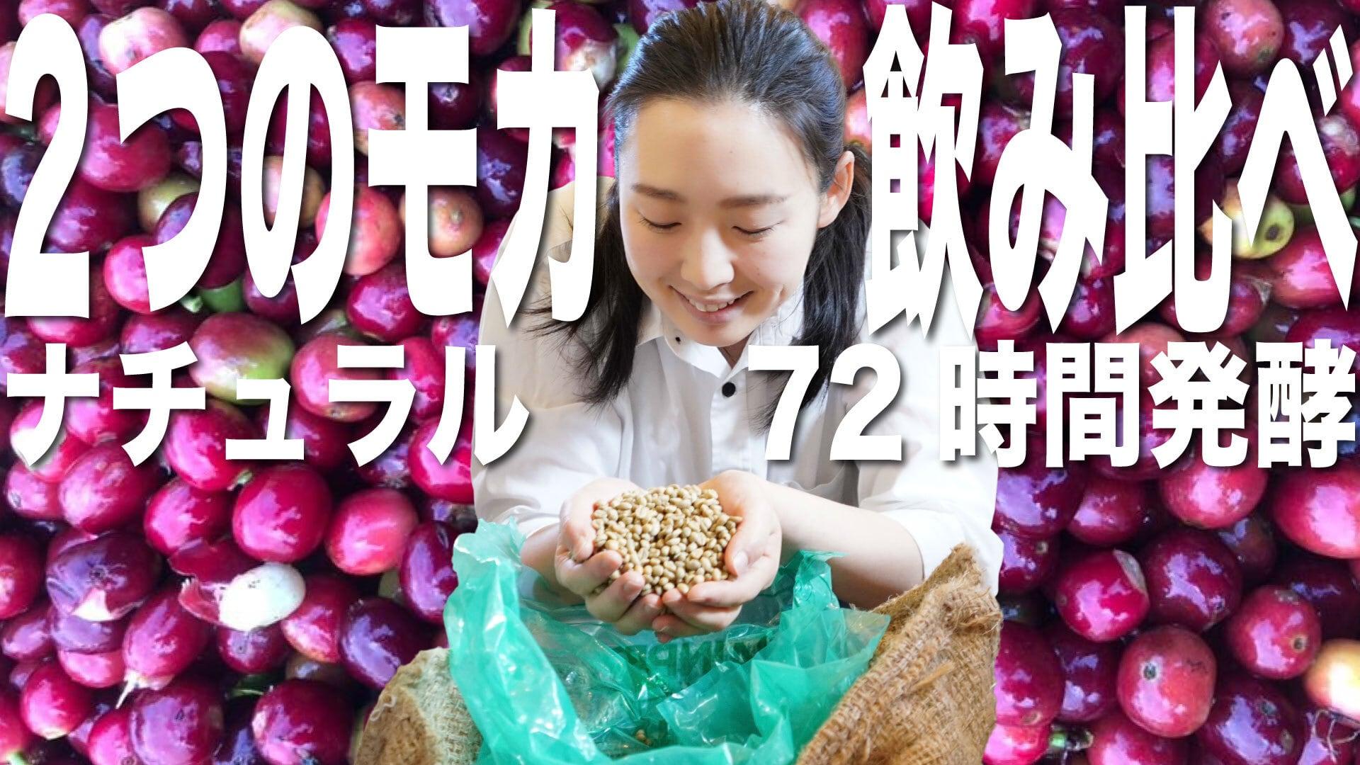 【期間限定】香りのモカ、アナエロ飲み比べセット (ナチュラルと72時間発酵)