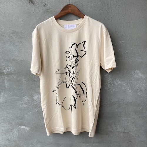 THE BIBIO PROJECT okra T-SHIRT FOR ADULTS