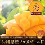 【秀品1kg】沖縄県産アルメゴールド(アップルマンゴー2~3玉)