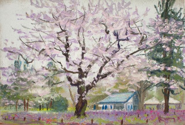 NO.5「風吹く花畑・5月」