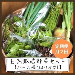 信州産 自然栽培『お一人様☆定期便』月2回 60サイズ (農薬、肥料不使用)