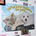 「HOME」ポスター2枚セット