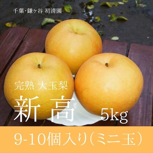 【ジューシーな大玉梨】新高食べきりサイズ 9-10個入り 5kg