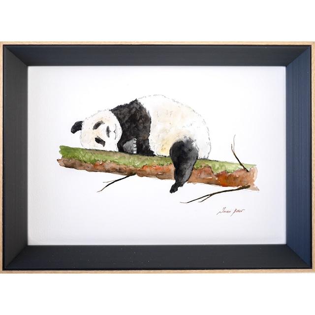 Relax Panda