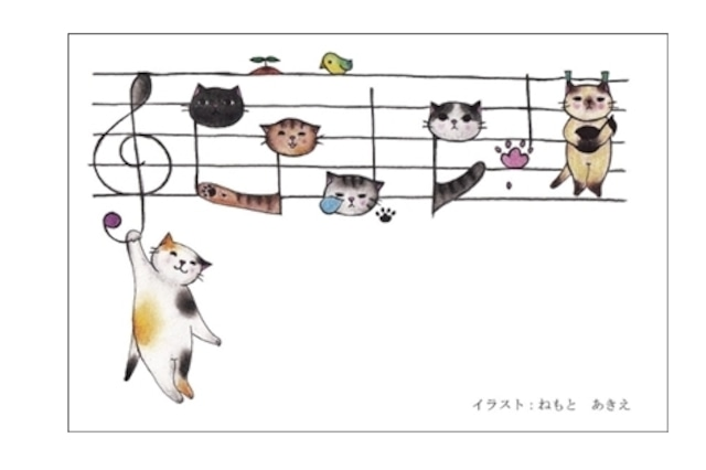 楽譜猫のポストカード(4枚セット)