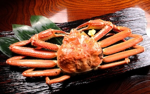 越前蟹 1.1kg~1.2kg(3人前程度、送料込)
