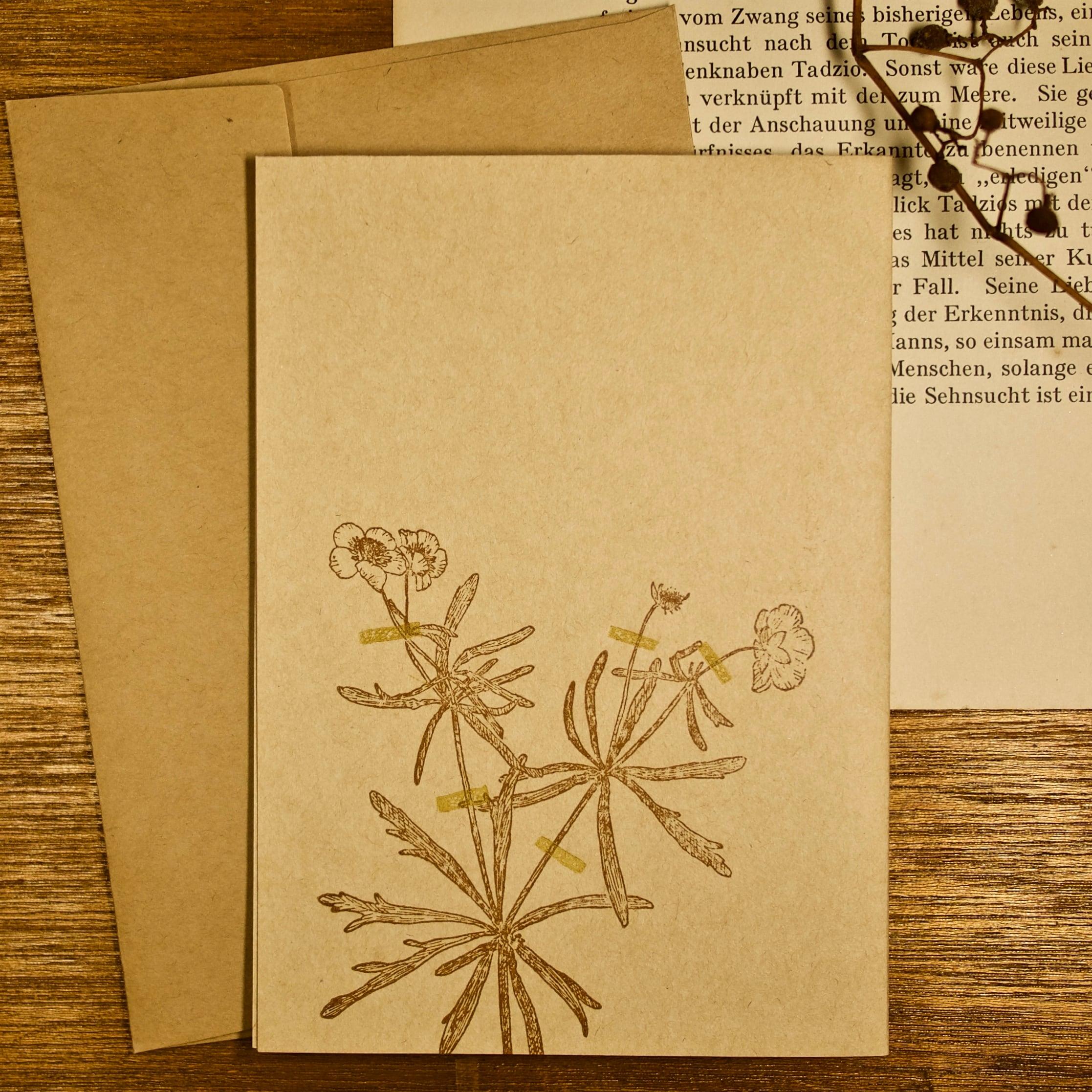 【カード 大】アンティーク押し花 キンポウゲ / カード1枚+封筒1枚
