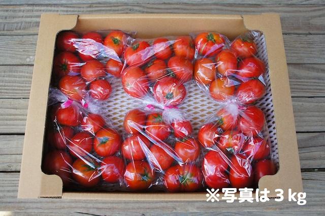 ご家庭用フルーツトマト約3kg☆お得な業務用箱入り