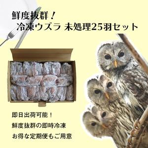豊橋産 冷凍ウズラ 未処理 25羽2ケース 親ウズラ 猛禽類・爬虫類の餌に