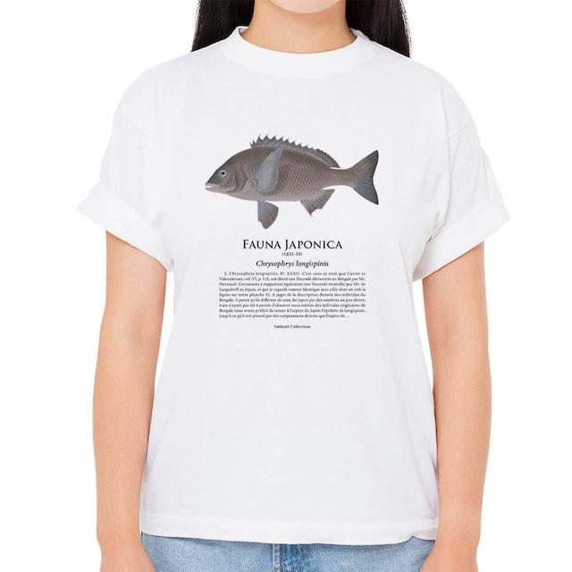 【クロダイ】シーボルトコレクション魚譜Tシャツ(高解像・昇華プリント)