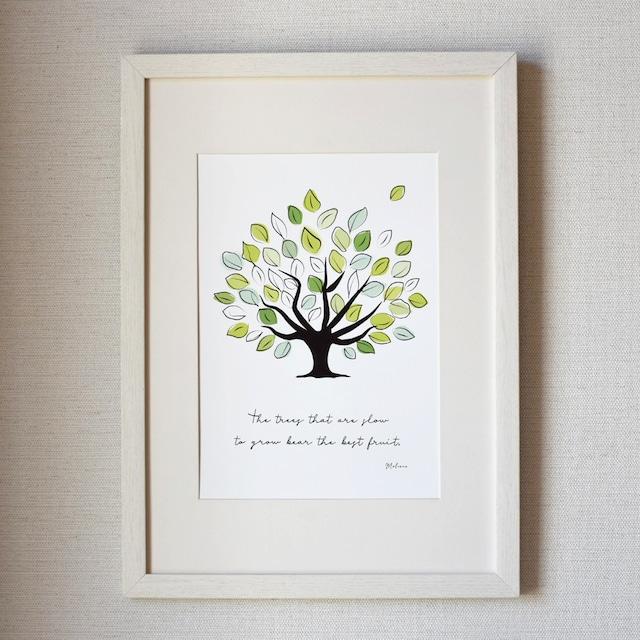 爽やかな木のポスター♪ カラー版 A4 グリーン インテリア  北欧 おしゃれ