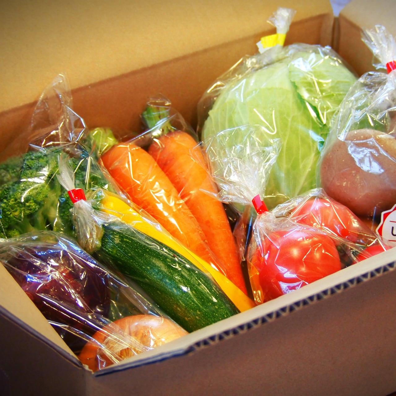 【てんこもりさん】山県の野菜詰め合わせBOX 田舎直送便