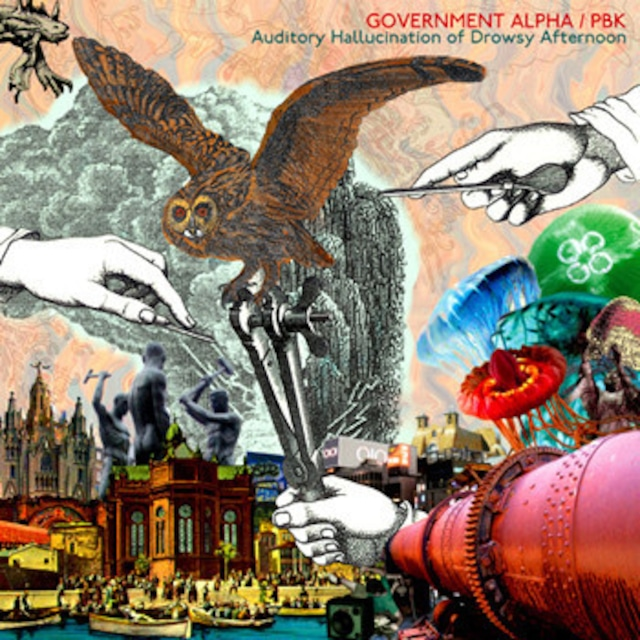 Government Alpha / PBK – Auditory Hallucination Of Drowsy Afternoon(CD)
