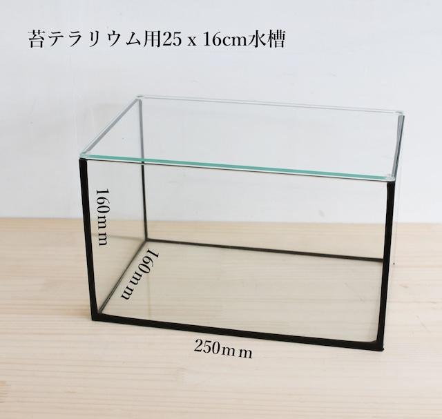 【ガラス容器】 苔テラリウム用 25x16cmガラス水槽 (250x160xh160mm)