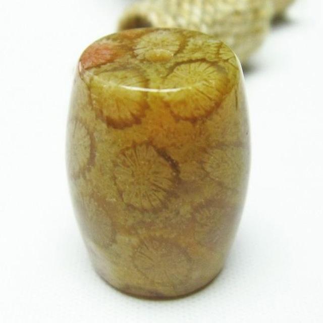 珊瑚 フォッシルコーラル 路路通 筒型ビーズ 変形ビーズ アクセサリーパーツ 天珠 メール便可 [M便 1/10] 112-3868