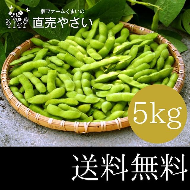 枝豆 大量 5kg 送料無料 やさい 夏野菜 新潟系14号 越後ハニー 晩酌茶豆 新潟産えだまめ 冷蔵