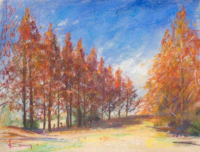 NO.124「見上げる紅・12月」