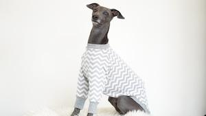 gray zigzag pullover