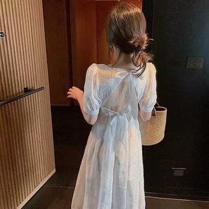 back ribbon chiffon dress