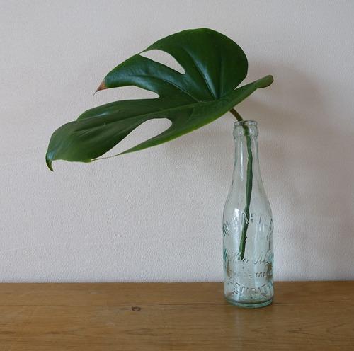 淡いグリーンが綺麗なガラス瓶