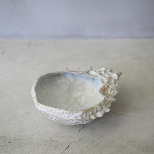 Spider Crab Bowl OCT-044