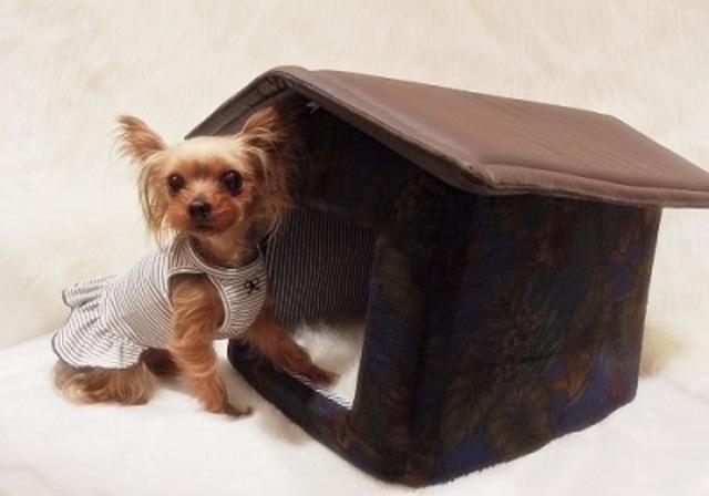 犬の生活 ハウス スタイリッシュアロハ
