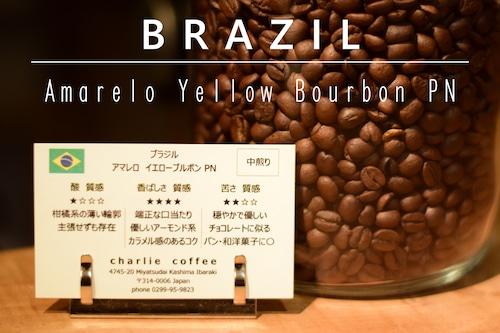 中煎り/ブラジル アマレロ イエローブルボン PN 1kg