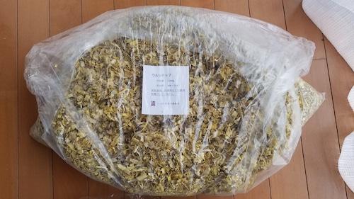草木染め用ウルシチップ(1kg)