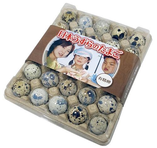 【有精卵】孵化用 豊橋産 日本うずらの卵 30個入り