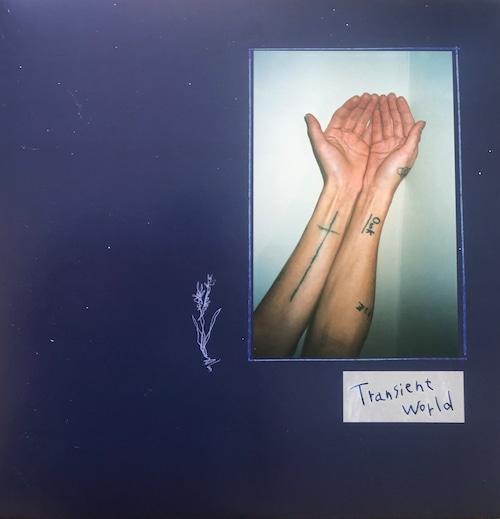「Transient world」完全限定生産(1枚組レコード)