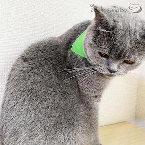 【まさかのプレーン・グリーン】猫用バンダナ風首輪/選べるアジャスター 猫首輪 安全首輪 子猫から成猫