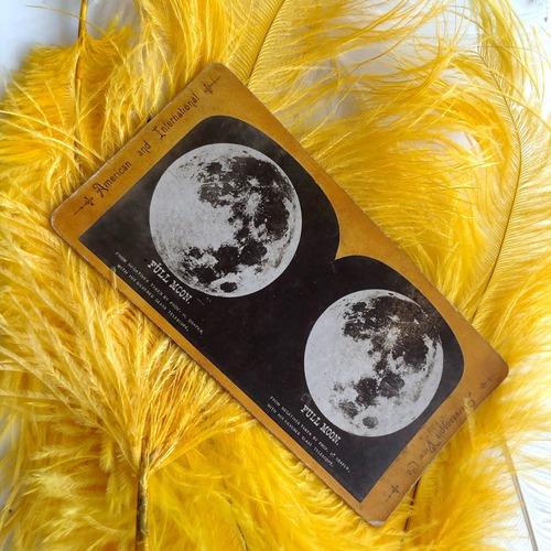 月のステレオグラム