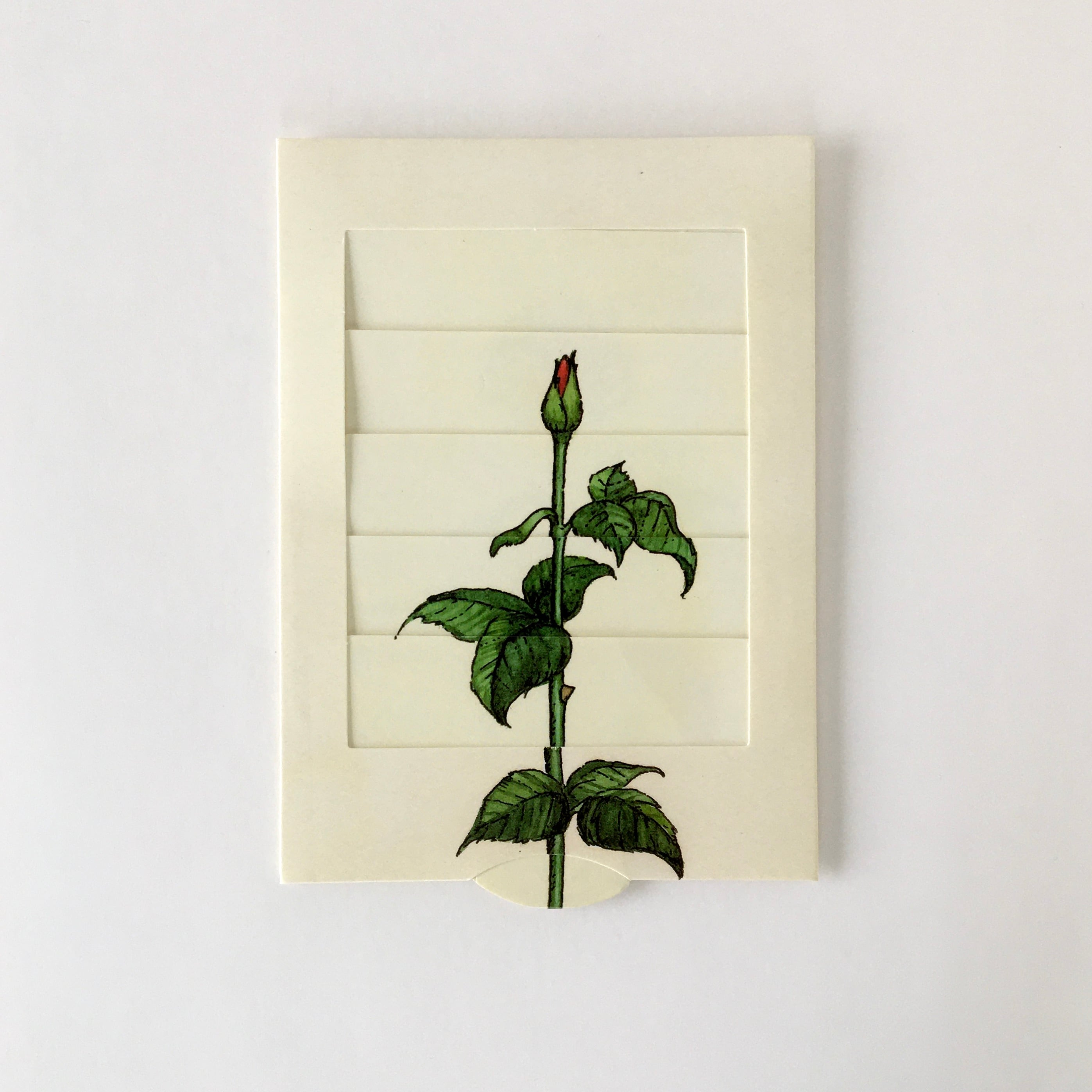 """絵が変わるグリーティングカード「バラ」 Living Card """"Rose"""""""