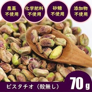 ピスタチオカーナル(殻無し:70g)農薬不使用 化学肥料不使用 無添加 生ナッツ