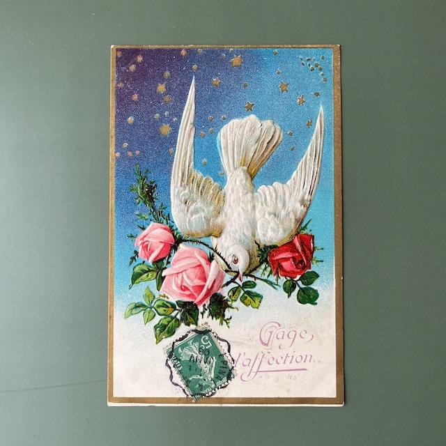 アンティーク鳩のポストカード b /  vp0196