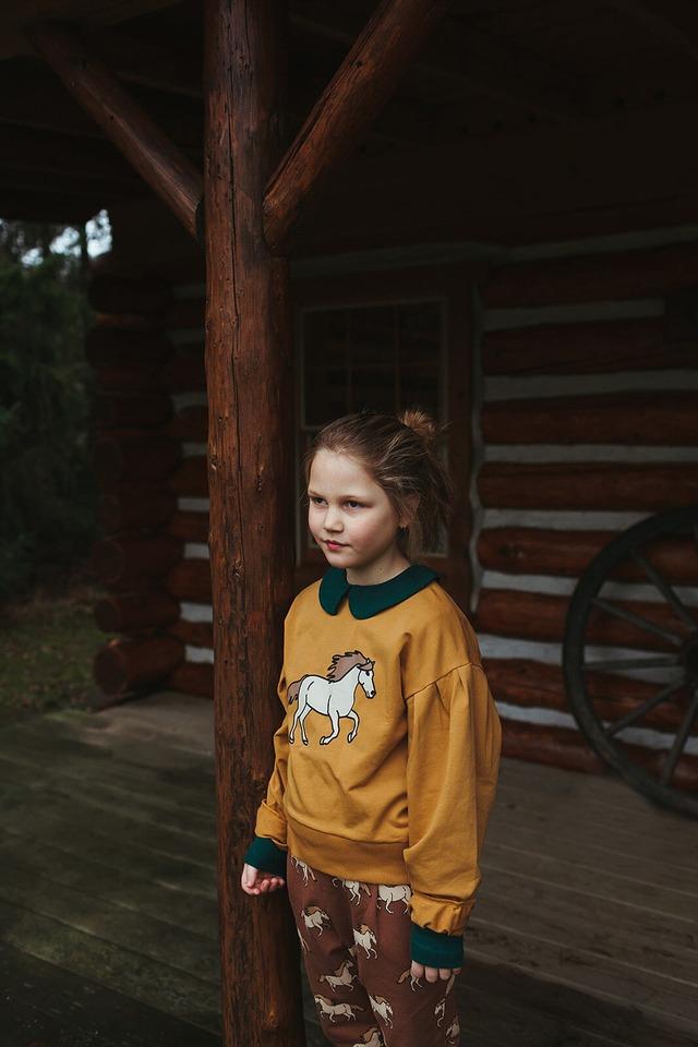 【21AW】カーラインク(CARLIJNQ)Wild House girls sweater スウェット 馬