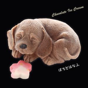 """リアル犬のチョコアイス """"ぽちとはなふ"""" 2個セット"""