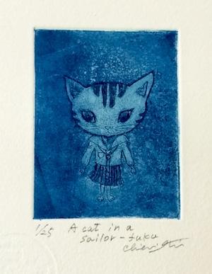 セーラー猫