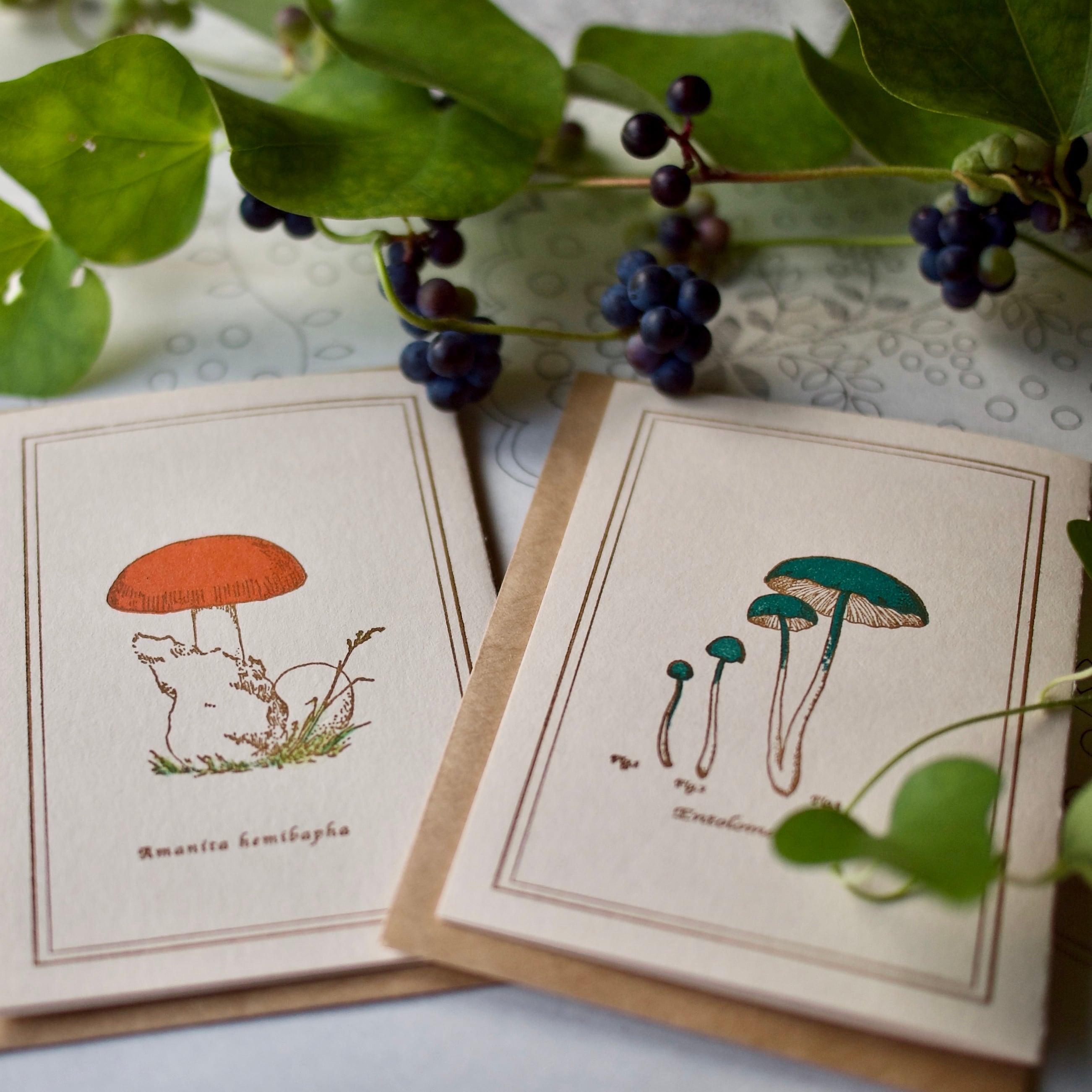 【キノコの小さいカード 2枚組】タマゴタケ・イッポンシメジ / カード2枚+封筒2枚/活版印刷