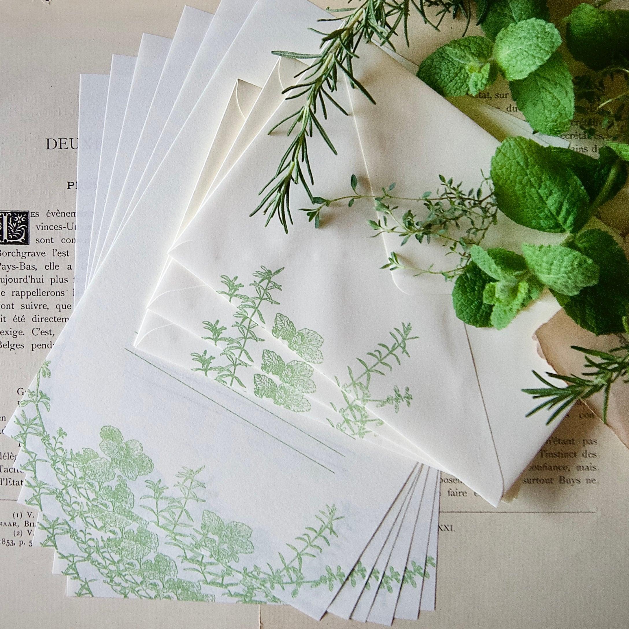 【レターセット】 ミント・ローズマリー・タイム  / 便せん6枚+封筒3枚 /活版印刷