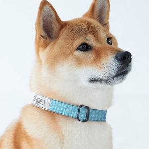 COLLAR CONPEITO【LAMUNE】犬用首輪
