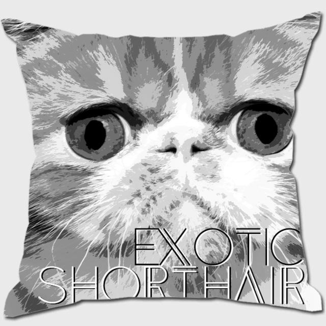 エキゾチックショートヘア 【IMPACT -shirokuro- 猫 クッション】