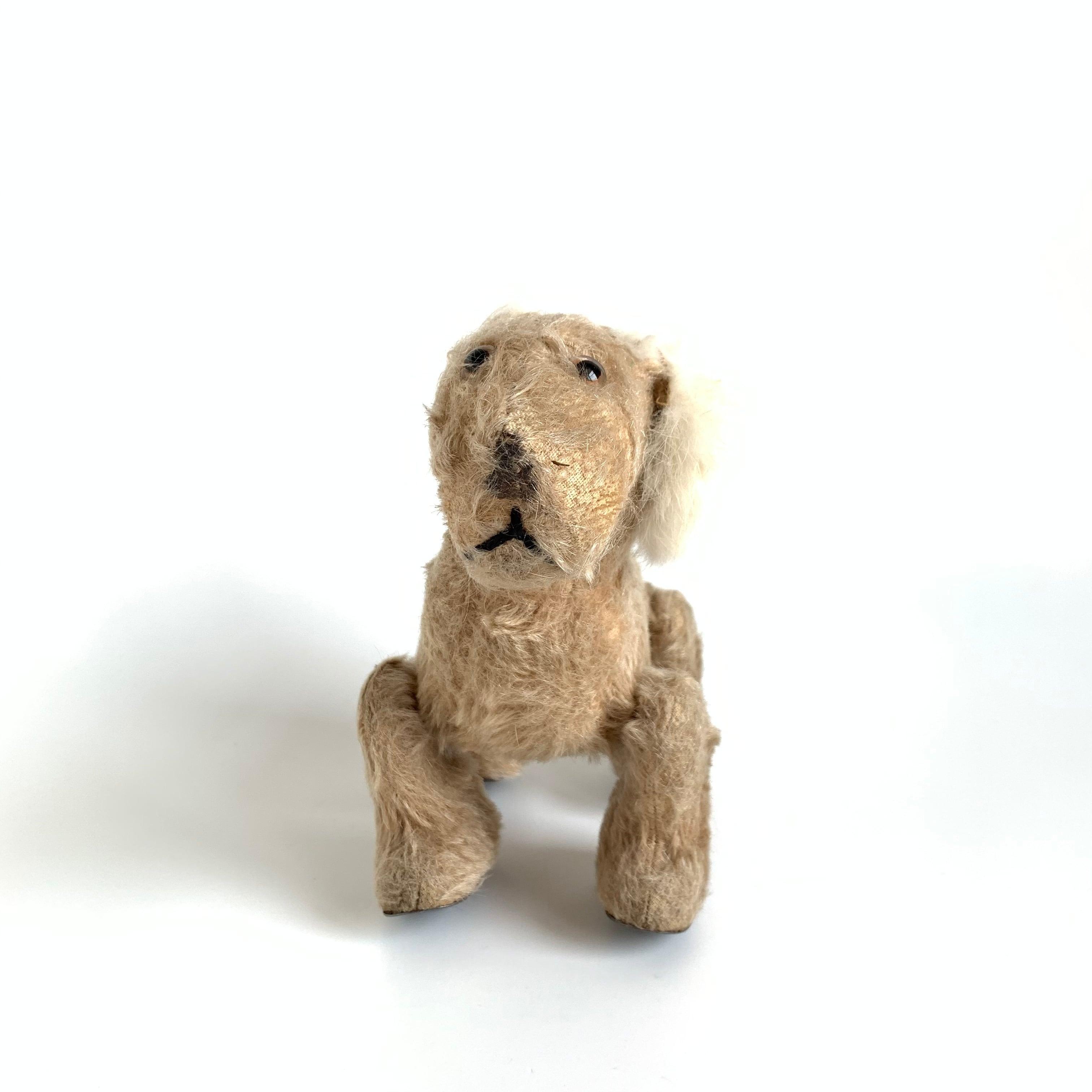 Dog / Pull Toy