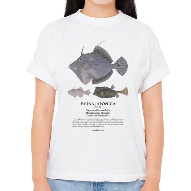 【カワハギ・ナガハギ・ウミスズメ】シーボルトコレクション魚譜Tシャツ(高解像・昇華プリント)