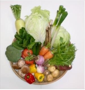 【冷蔵便】 青空市発!新鮮野菜セット