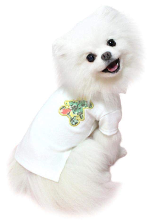 犬の生活 16SS クールポロシャツ テディベア オフホワイト